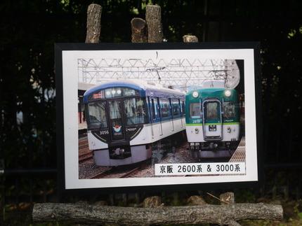 P1000697
