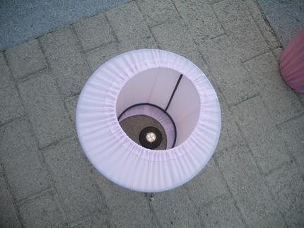 P3010061