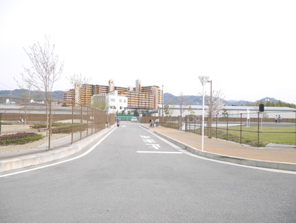 右が自転車の駅、左が公園