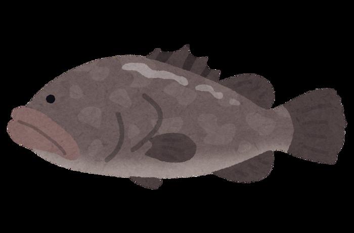 100kg級の巨大魚が網にかかったと話題に!!!