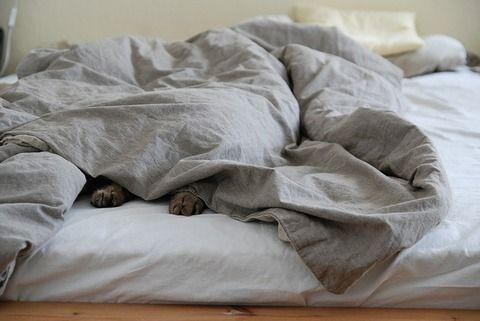 【悲報】毎朝6:45頃に隣のババアに起こされるんだが・・・