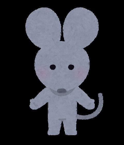 【悲報】ワイの部屋、ネズミが出てくるwwwww(※衝撃画像あり)