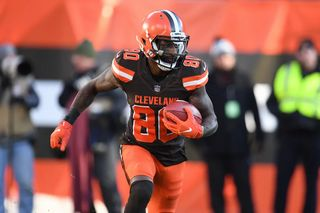 Browns-01-6