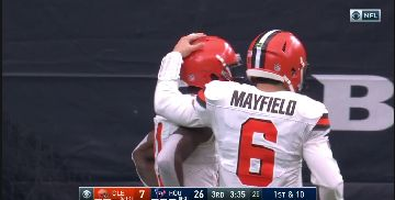 Browns-15-3
