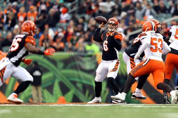 Browns-14-4