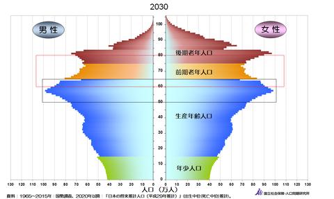 人口ピラミッド2030