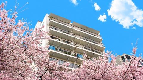 人生後半戦はどこに住むのがよいのか #1:持ち家か賃貸か