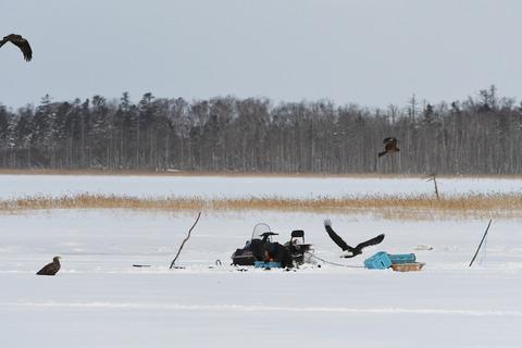 氷下待網漁sD50_0318