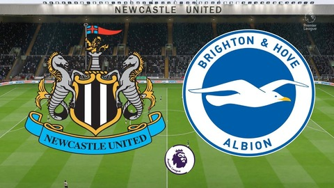 Newcastle-Brighton-98789879