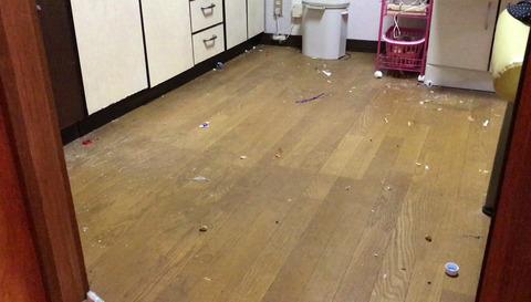 キッチン床-掃除機前