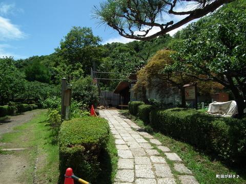 20110723070薬師池公園・旧永井家住宅の茅葺屋根