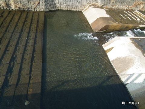 20110205028恩田川工事