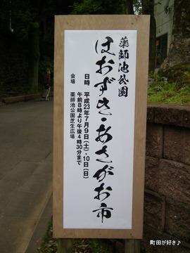 20110612106薬師池公園 ほおずき・あさがお市