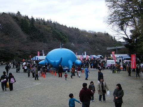 2009032858.jpg 2009芹ヶ谷公園さくら祭り