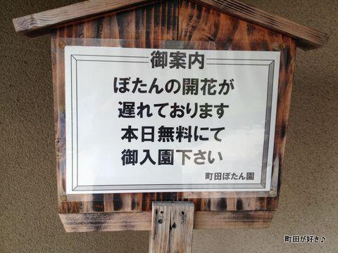 20120415035日曜日の町田ぼたん園