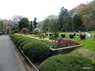20100418169薬師池公園