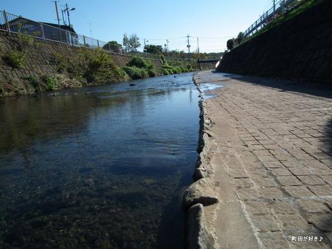 2010110314秋の恩田川
