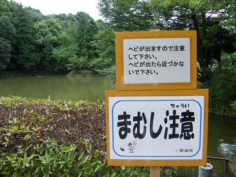 2009071136.jpg 薬師池公園 まむし注意