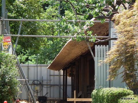 20110723071薬師池公園・旧永井家住宅の茅葺屋根