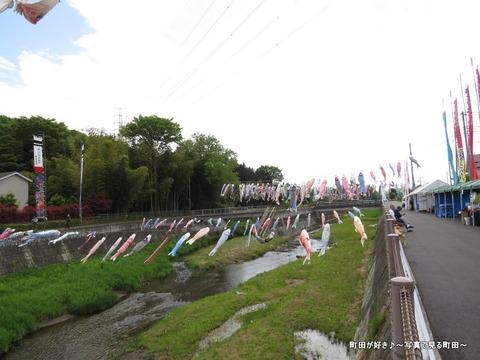 20140428014鶴見川泳げ鯉のぼり