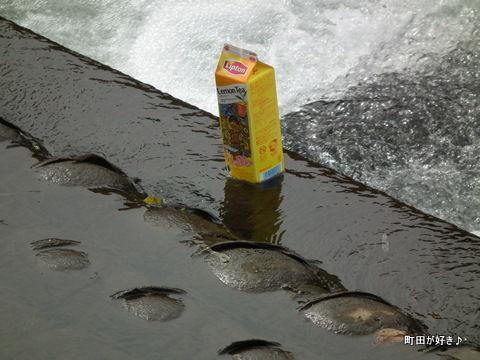 20111023019恩田川