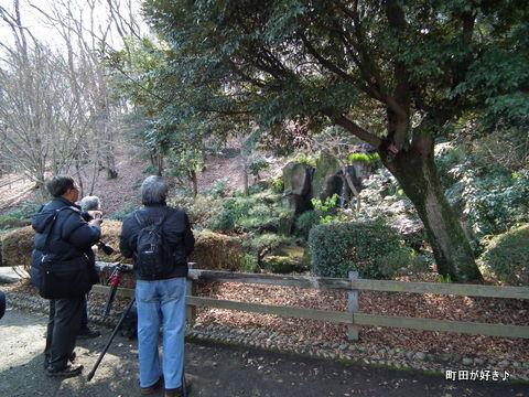 2011021353薬師池公園
