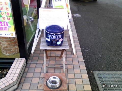 20091219004ワンコの泉