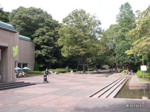 2009092345 芹ヶ谷公園を歩く