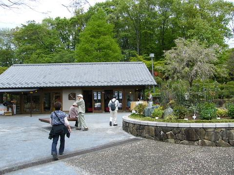 20090418104.jpg 町田ぼたん園