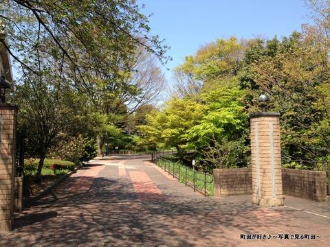 2013041313さわやかな緑に囲まれる国際版画美術館
