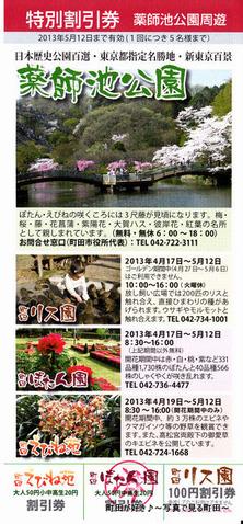 20130420233町田ぼたん園