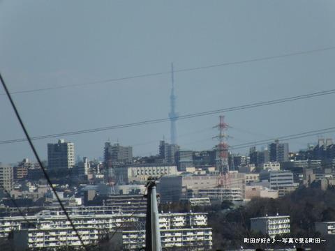 20130216045七国山から東京スカイツリー