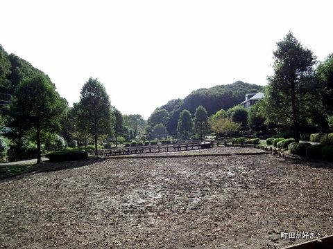2010102355薬師池公園