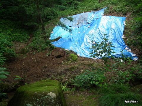 2011060547薬師池公園・旧荻野家