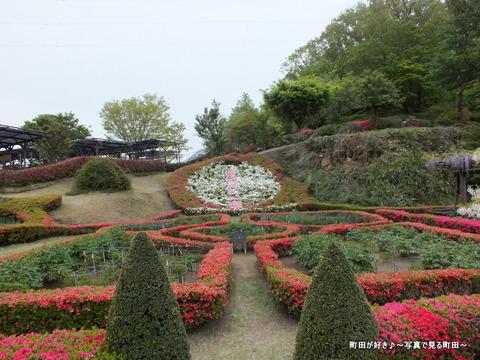 20130420127町田ぼたん園
