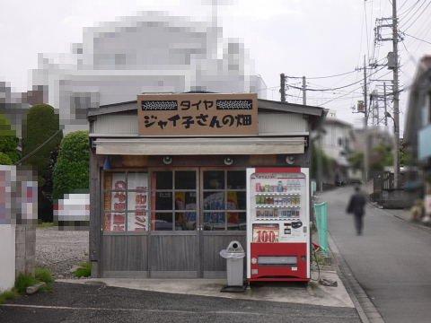 2009051722.jpg タイヤ ジャイ子さんの畑