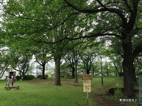 2012062304成瀬城跡