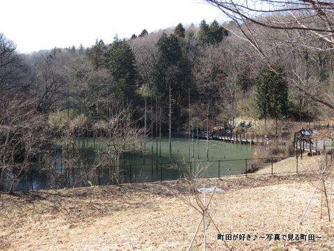 20140112034小山内裏公園の大田切池