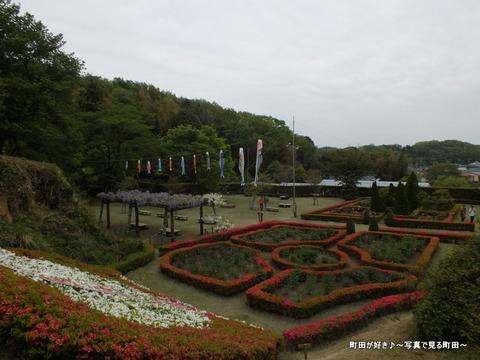 20130420204町田ぼたん園