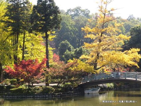 20131116122薬師池公園