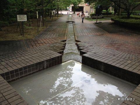 2012070803水の芹ヶ谷公園