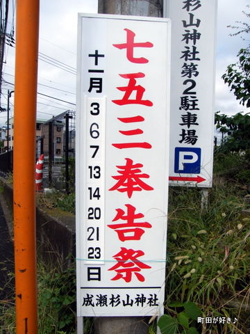 2010101007成瀬杉山神社