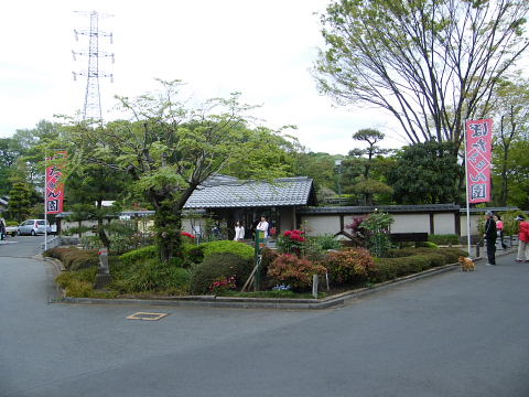 20090418041.jpg 町田ぼたん園