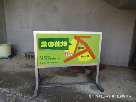 20140428095七国山の菜の花畑