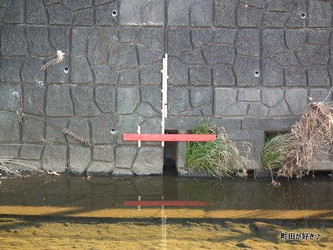 20110122006恩田川防災工事