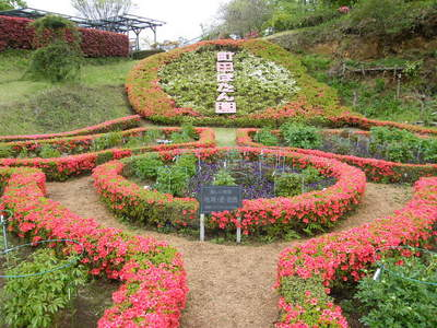 20090418058.jpg 町田ぼたん園
