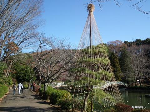 2010121122薬師池公園冬支度