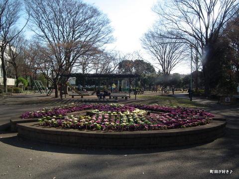 20101218001忠生公園