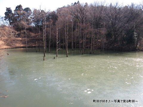 20140112041小山内裏公園の大田切池
