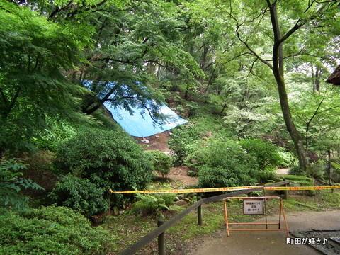 20120617116薬師池公園の土砂崩れ現場